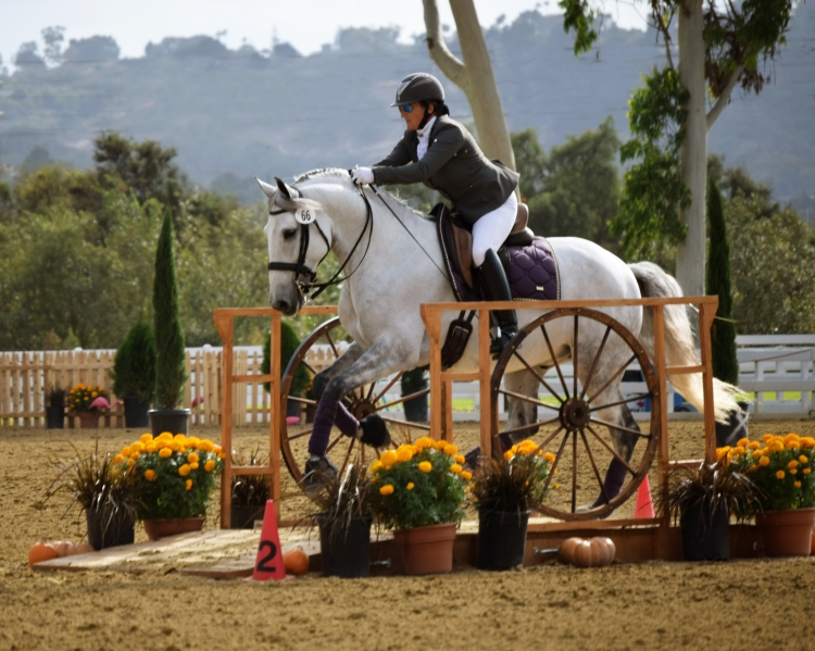 Working Equitation Bridge Obstacle, Speed Trial