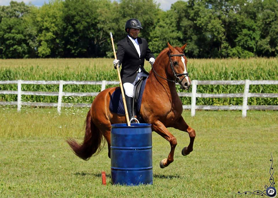 Working Equitation Speed Obstacle