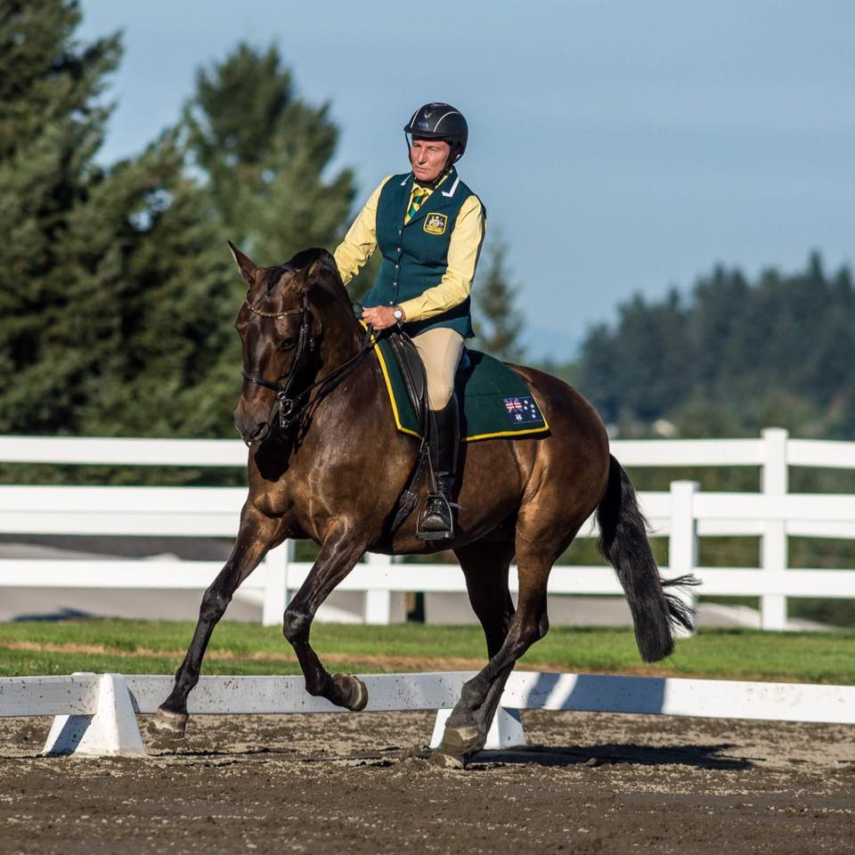 Working Equitation Classical Dressage