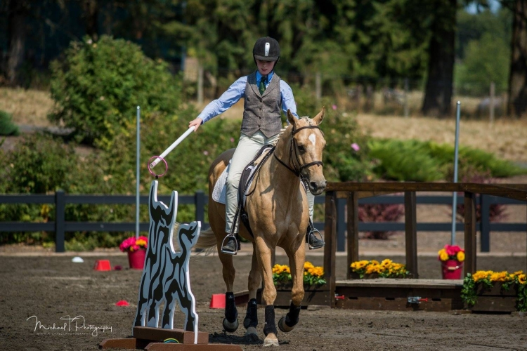 Working Equitation Ease of Handling Bull and Ring Obstacle
